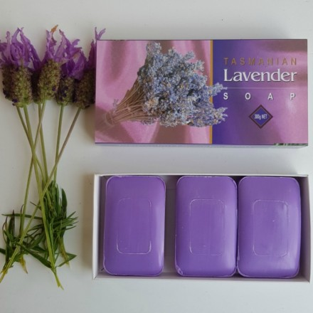 Lavender Soap Pack