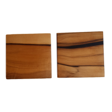 Sassafras Set of Two Coasters