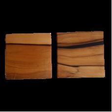 Sassafras Set of Two Coasters